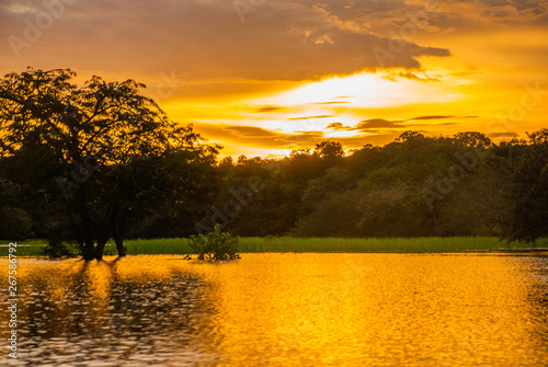 Obraz na plátně Beautiful sunset landscape overlooking the river and the Amazon jungle