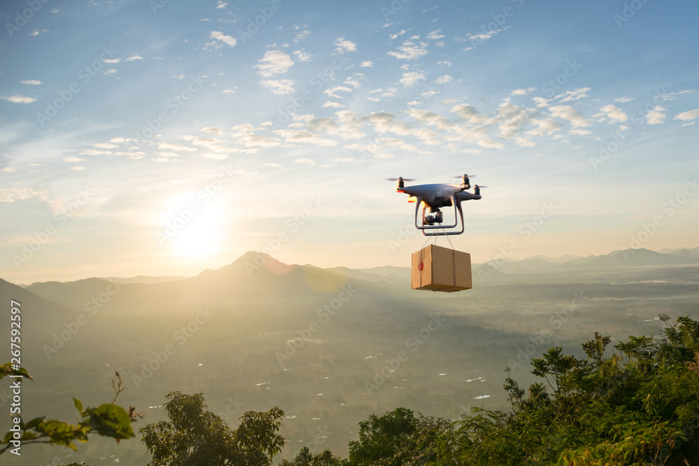 Fototapety, obrazy: Technology unmanned aircraft logistics air cargo transportation of goods sold