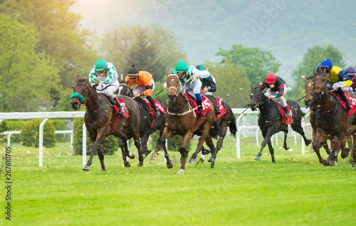 Fotografie, Obraz Horse racing outdoor derby