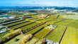 Little farms and orchards with oceanic bay on the background. Auckland, New Zealand