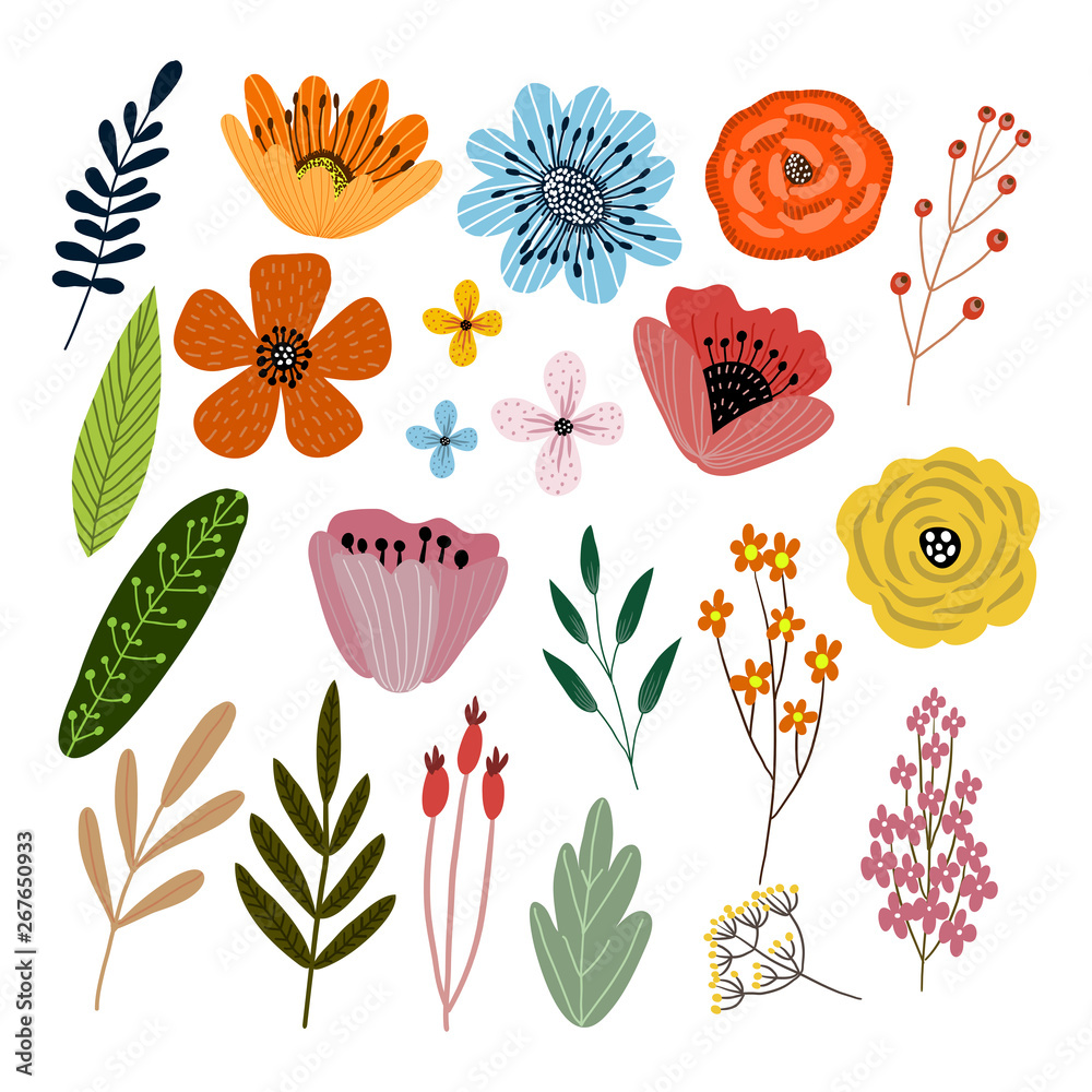 Fototapety, obrazy: Vector set of isolated floral elements with hand drawn flowers on a white background