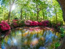 Beautiful Garden Of Richmond O...