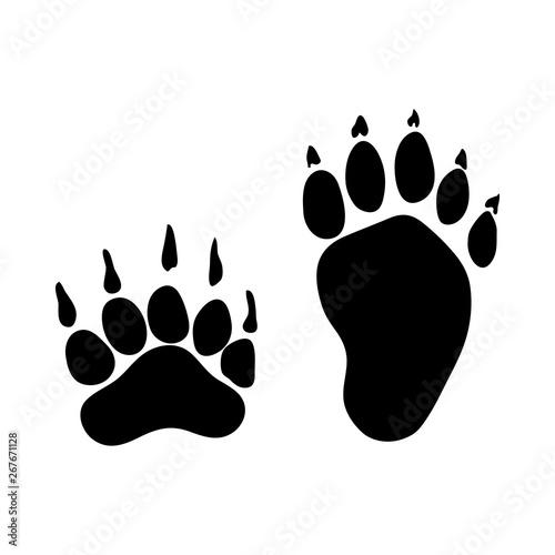 Obraz na płótnie Badger Footprint
