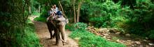 Couple Riding Elephant In Thai...