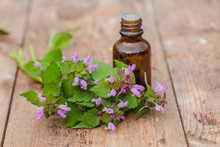 Pharmaceutical Bottle Of Medicine From Thymus Vulgaris, Common Thyme, German, Garden Or Just Thyme On A Wooden Table. Preparation Of Medicinal Plants. Ready Potion Of Grass. Ethnoscience.