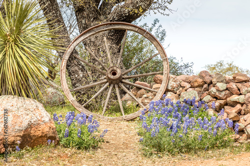 Photo Willow City loop, Texan landscape in spring with wildflowers