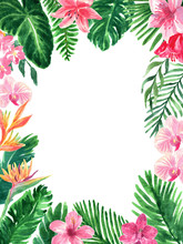 Tropical Watercolor Floral Fol...