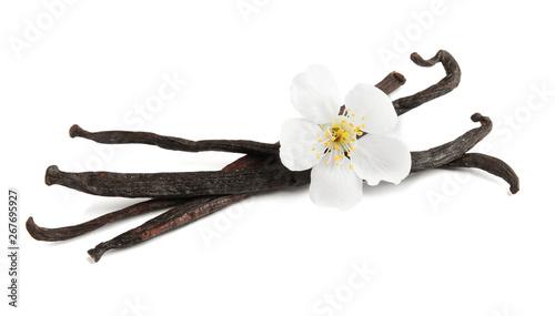 Cuadros en Lienzo  Aromatic vanilla sticks and flower on white background