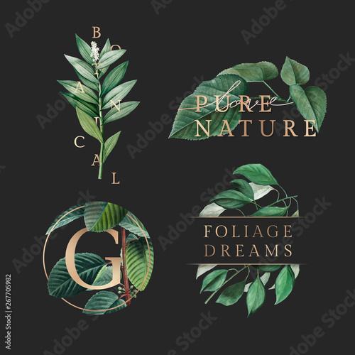 Nature foliage wallpaper Wall mural