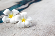Plumeria Flowers On Wooden Textured Background With Blue Glass. Place For Text.