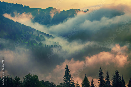 Photo sur Toile Bleu vert Foggy morning landscape