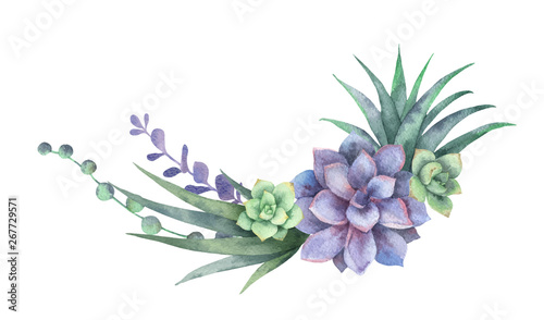 Fototapeta Watercolor vector wreath of cacti and succulent plants isolated on white background