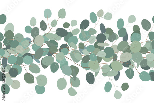 fototapeta na lodówkę Elegant seamless border of a eucalyptus branches. Floral frame. Vector hand drawn illustration. White background.