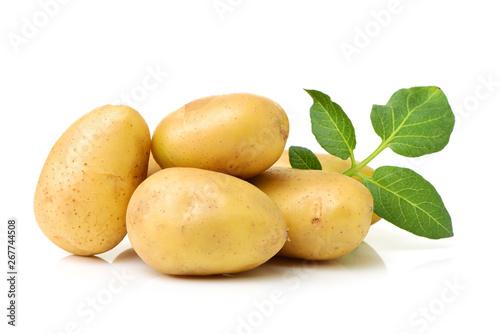 Fototapeta New potato isolated on white background