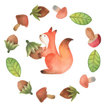 Сute Little Squirrel With Hazelnut Surrounded By Wreath Of Mushroom, Hazelnut And Leaf, Isolated On White Background