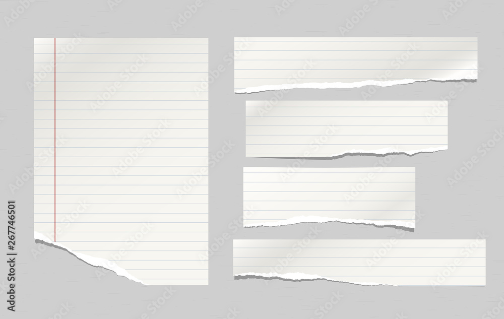 Fototapeta Set of torn note, notebook lined paper strips stuck on grey background. Vector illustration