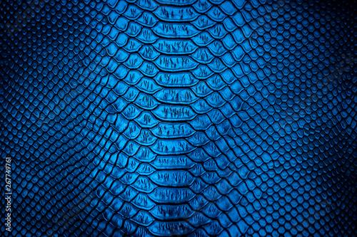 Fotobehang Krokodil Blue leather texture