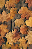 Autumn leaves on rustic wooden background. Top view with copy space. - 267760528
