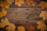 Autumn leaves on rustic wooden background. Top view with copy space. - 267761121