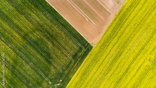 Fotografia Colorful patterns in crop fields at farmland, aerial view, drone photo