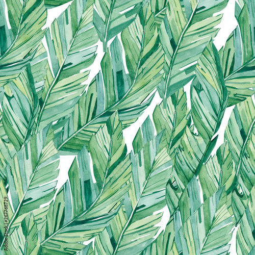 watercolor seamless pattern tropical banana leaves. Summer glamour print  for the textile fabric and wallpapers Wall mural