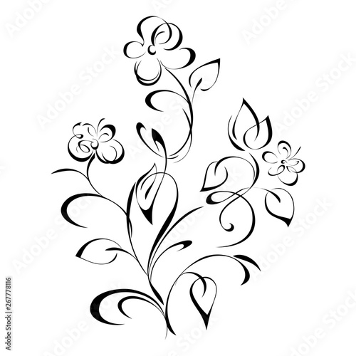Fototapety, obrazy: stylized bouquet of wildflowers with leaves and curls in black lines on white background