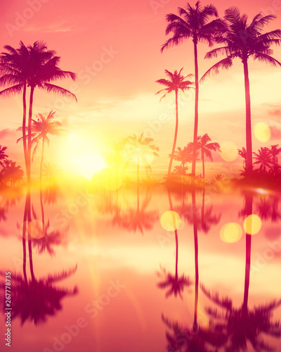 Water reflection tropical palm tree with colorful bokeh sun light on sunset sky cloud abstract background. Wall mural