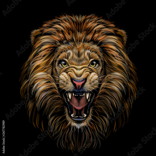 Color portrait of a growling lion on a black background Wallpaper Mural