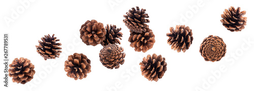 Fotografie, Obraz  Falling pinecones isolated on white background with clipping path