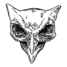 Owl Skull Isolated On White. Hand Drawn Art Sketch. Bird Head. Witchcraft Magic, Occult Attribute Decorative Element. Vector.