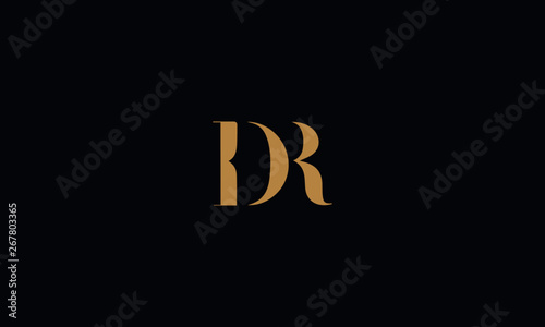 Fotomural DR logo design template vector illustration