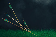 Four Wooden Arrows In The Grass. Beautiful Smog Background. Medieval Weapons Handmade.