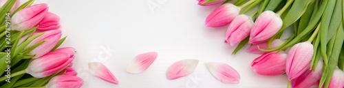 Obraz premium Różowe tulipany na białym tle na białym tle drewna. Tło uroczystości.