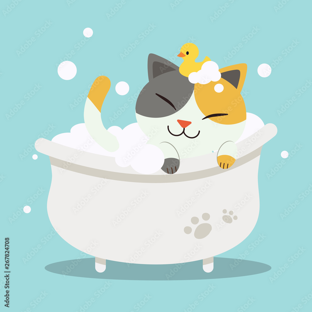 Fototapeta A Cute  character cartoon cat lying in the bathtub with duck toy.