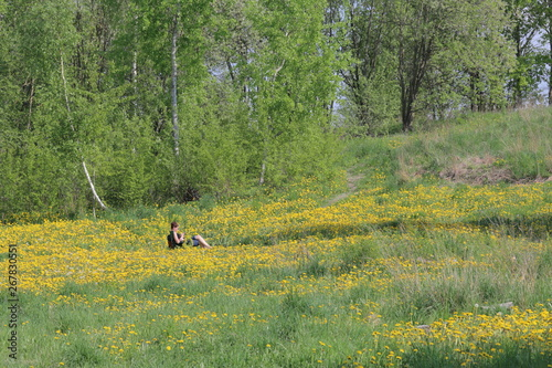 La pose en embrasure Equitation A girl sits in a picnic chair. On a spring meadow with bright green young grass, trees and flowering dandelions.