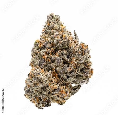 Fototapeta White Buffalo Cannabis Bud obraz