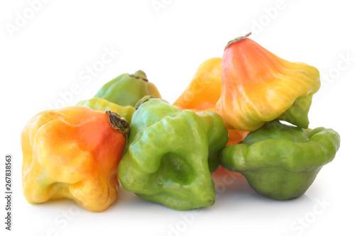 Fotografie, Obraz Scotch bonnet peppers