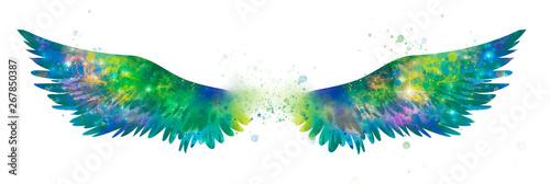 La pose en embrasure Papillons dans Grunge Beautiful magic watercolor wings, symbol of freedom