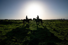Cowboys On Horses In The Golan Heights, Israel