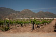 Mountainous Chain That Surrounds Vids In Ensenada Valley Bajacalifornia Mexico