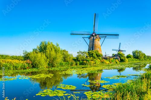 Obraz Kinderdijk windmills viewed during sunny summer day, Rotterdam, Netherlands - fototapety do salonu