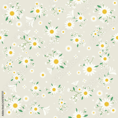 Seamless daisy floral pattern, Beautiful daisy floral, bloomy plant grass decor, Fototapete