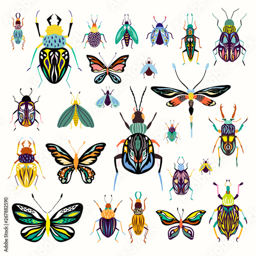 Fotografiet Insects collection with decorative butterflies and beetles isolated on white