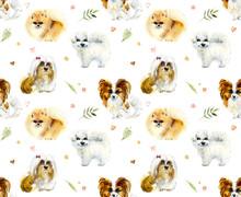 Cartoon Small Dogs. Watercolor...