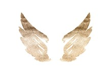Abstract Watercolor Wings In V...