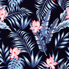 Blue Tropical Leaves Pink Flowers Black Background
