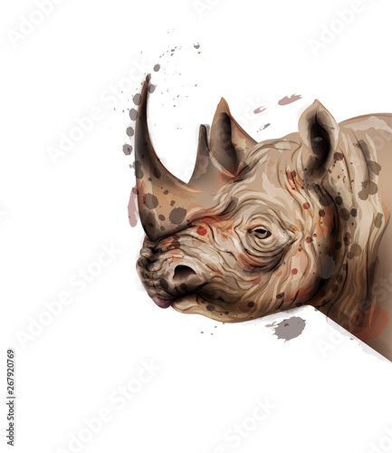 Fotografia, Obraz  Rhino Vector watercolor