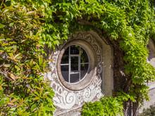 Round Circular Window Surround...