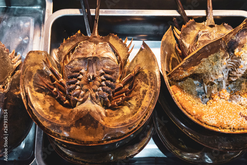 Valokuva  Fresh Horseshoe crab in seafood market