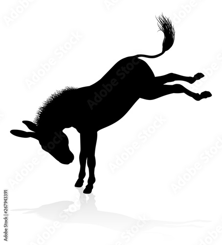 Fotografering A detailed high quality donkey farm animal silhouette